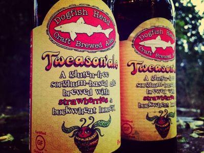 gluten free beer tweasonale dogfish head beer review east coast breweries