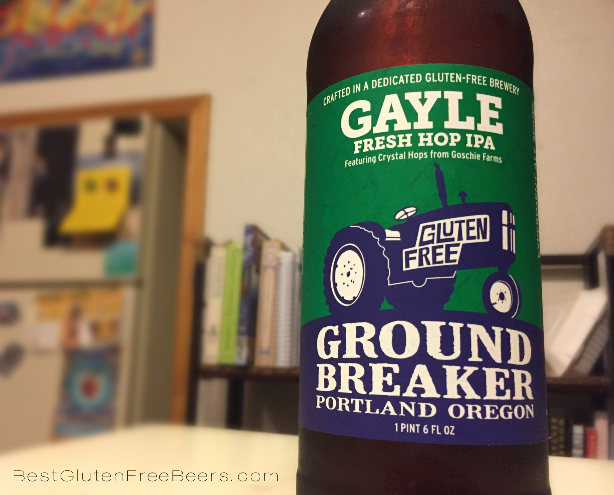 ground breaker brewing gayle fresh hop ipa