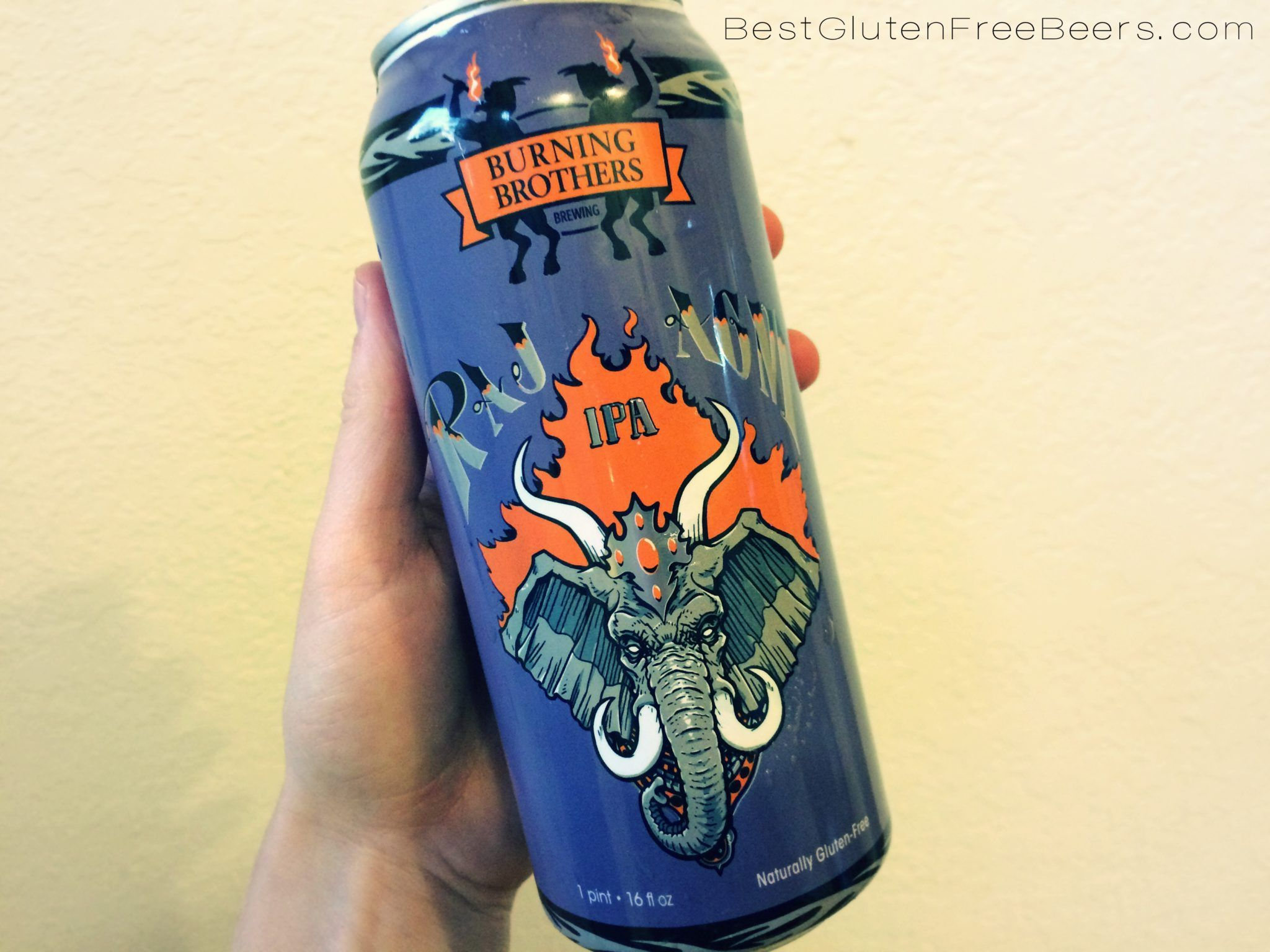 Gluten Free Beer Review: Burning Brothers Brewing Raj-Agni IPA