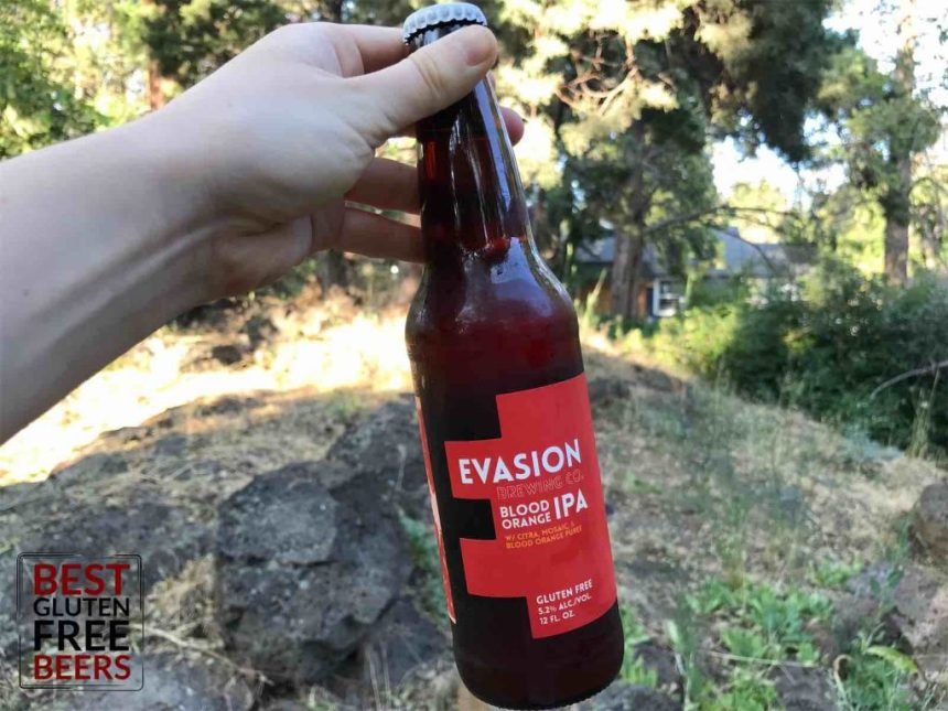 Evasion Brewing Blood Orange IPA