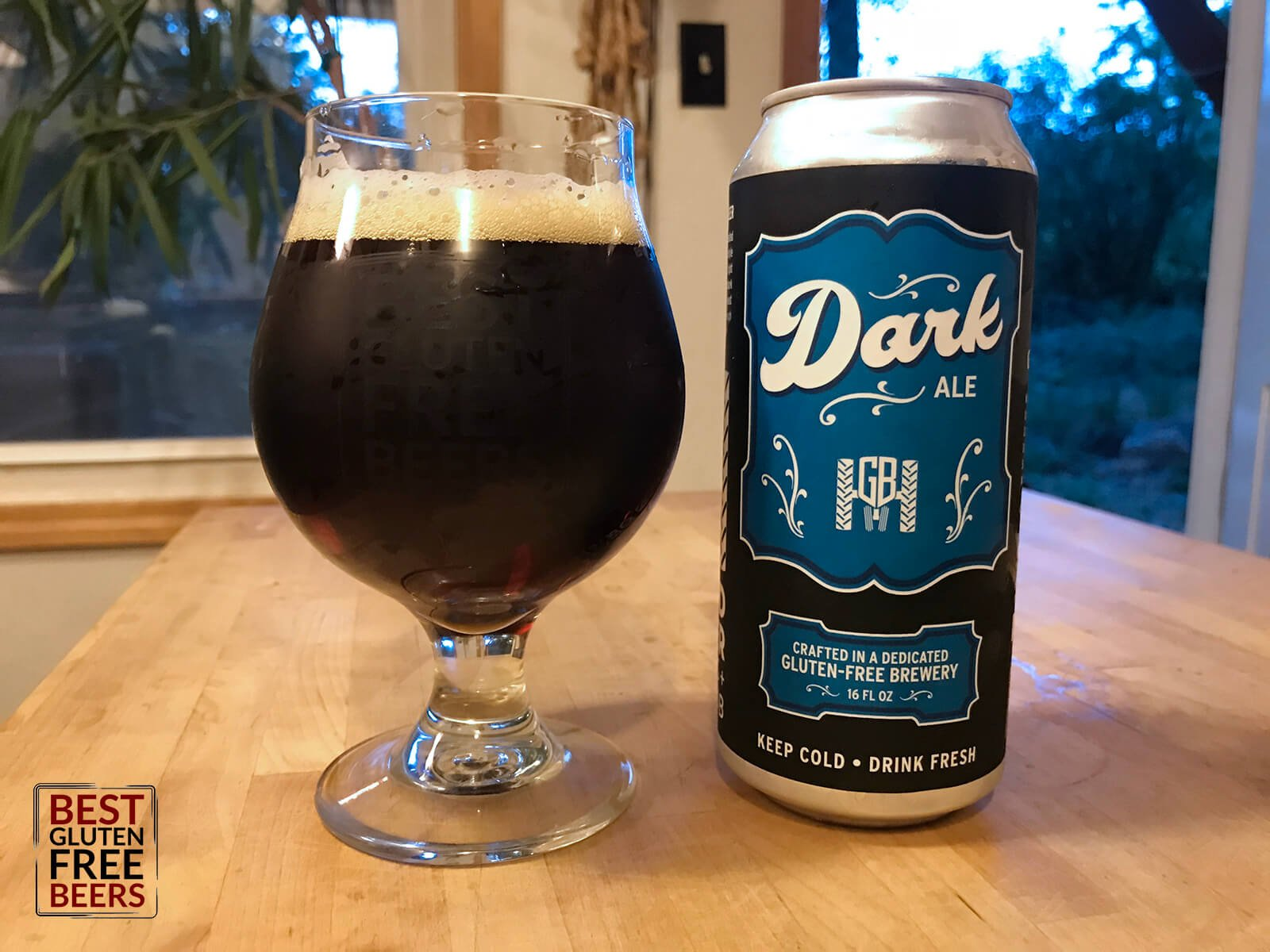 Ground Breaker Brewing Dark Ale 1