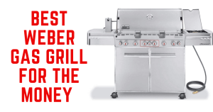 best weber gas grill for the money