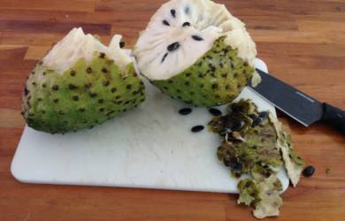 soursop uses