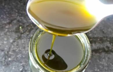 Nettle Turmeric Honey Elixir