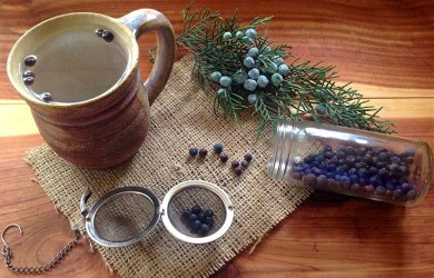 Juniper Berries Featured