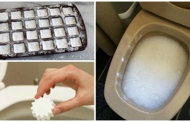 DIY Homemade Toilet Cleaner
