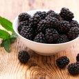 Blackberry benefits