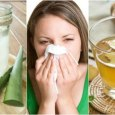 treat allergic rhinitis