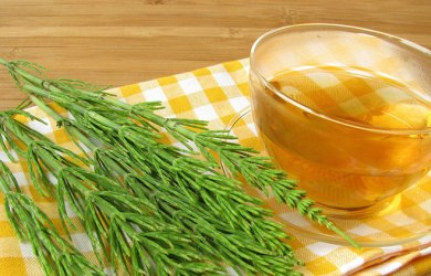 horsetail tea benefits