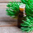 How to use Pine Essential Oil to Relieve Colds
