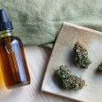 CBD Tinctures for Anxiety and Stress