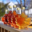 Health Benefits of Maple Syrup