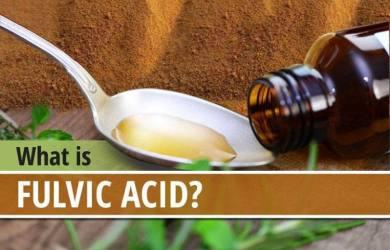 Health Benefits of Fulvic Acid