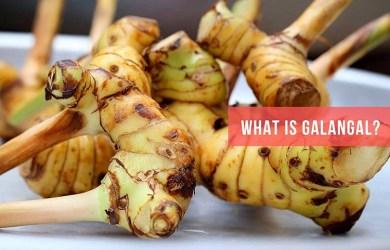 Galangal-Blue ginger Benefits