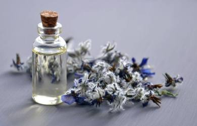 What is borage oil