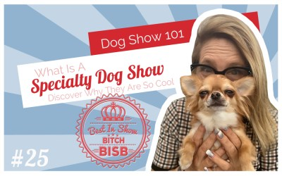 What is a Specialty Dog Show – Episode TWENTY-FIVE