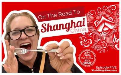 On the Road to Shanghai – Episode FIVE