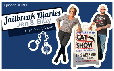 The Jailbreak Diaries: Going To A Cat Show