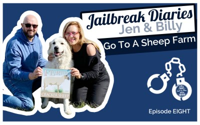 The Jailbreak Diaries: Going To A Sheep Farm