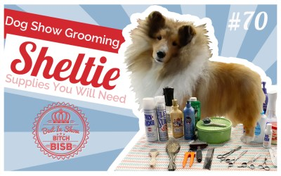 Dog Show Grooming: How to Groom a Sheltie & The Supplies You Need