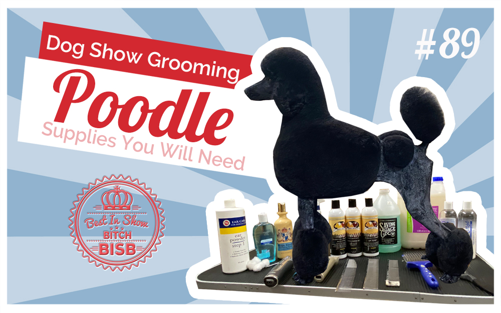 Dog Show Grooming: How to Groom a Poodle & The Supplies You Need