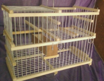 Repeating Trap Cage For Birds