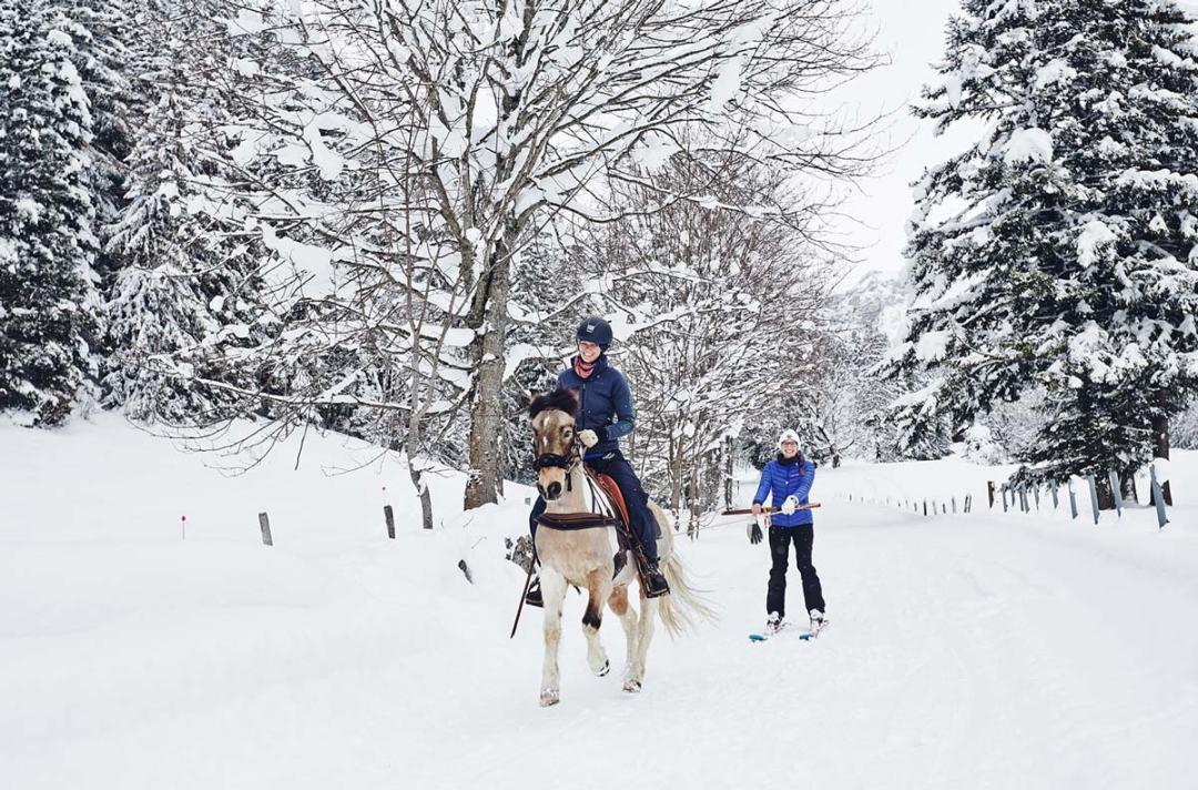 Ou-faire-du-ski-joering-en-Suisse