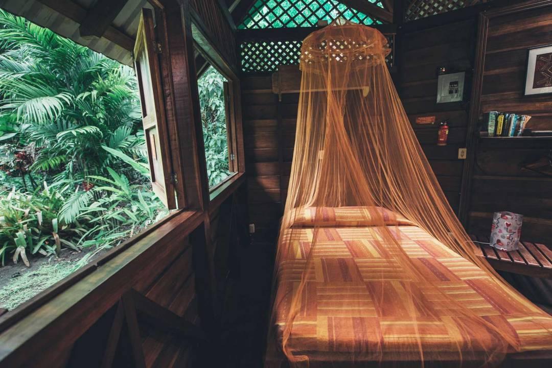 nuit dans la jungle costa rice