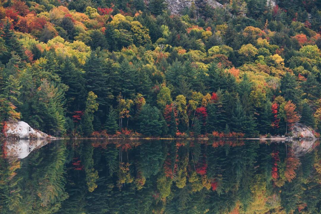 automne au canada ontario itinéraire pour voir les feuilles colorée