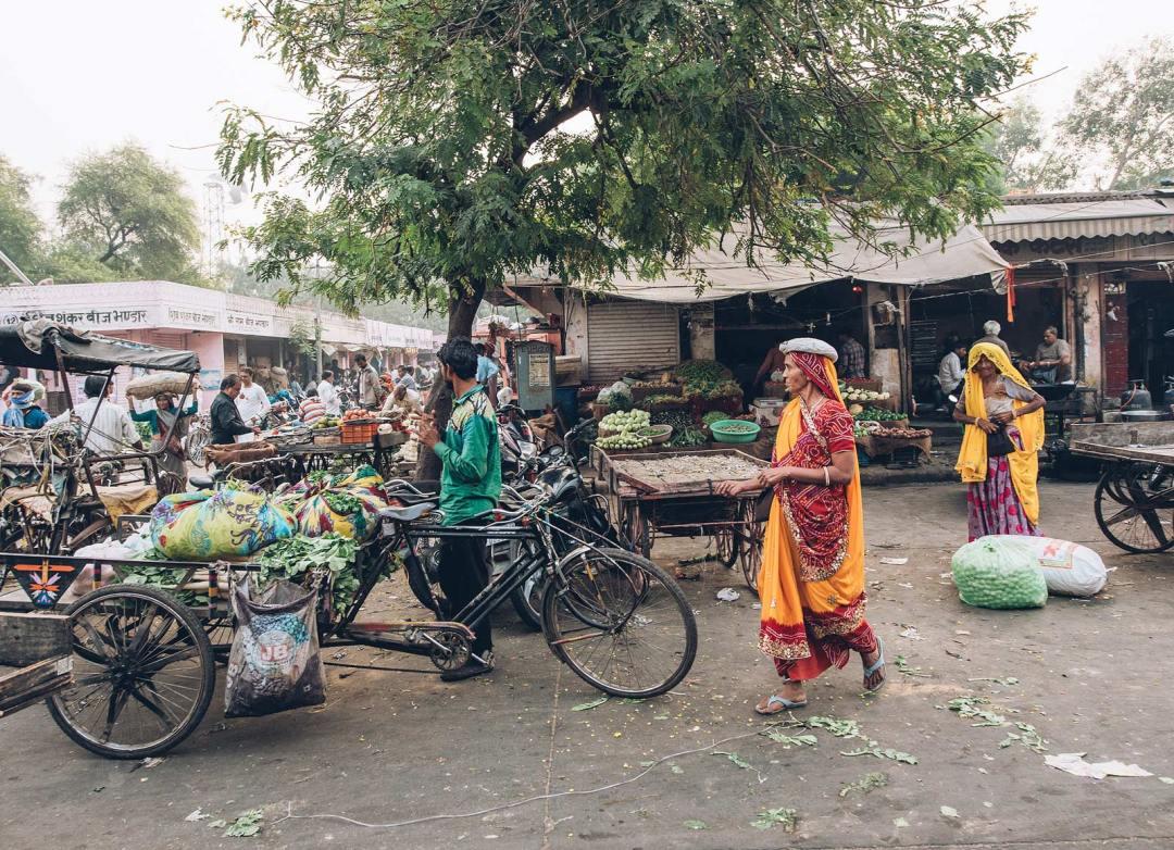 jaipur marché aux légumes