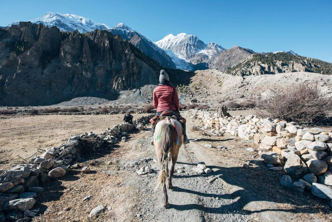 faire du cheval a manang népal