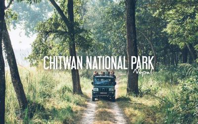 NÉPAL | UN SAFARI DANS LA JUNGLE, LE PARC NATIONAL DE CHITWAN
