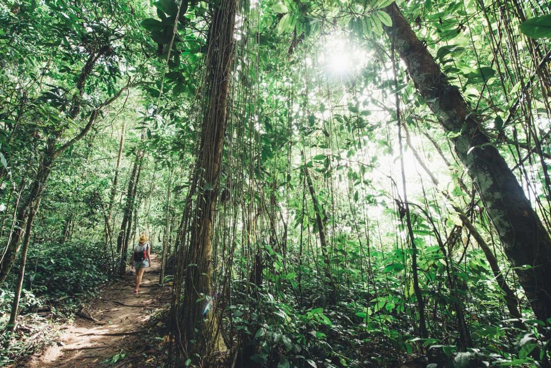 parc national de cahuita infos