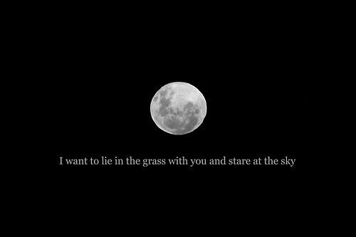 i want to lie in the grass with you and stare at the sky ...