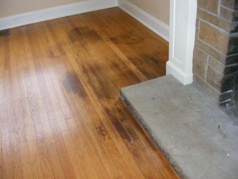 Cleaning Pet Stains On Laminate Floors, How To Get Urine Out Of Laminate Flooring