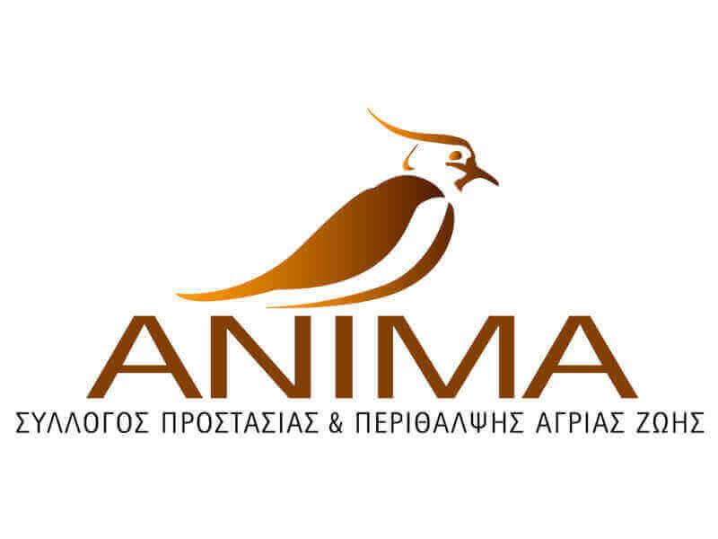 ΑΝΙΜΑ πυρόπληκτα ζώα