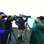 <i>Podcast: Bainbridge Outdoors:</i> <br>85th Annual Christmas Bird Count at Restoration Point