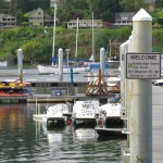 <i>Podcast: What's Up Bainbridge: </i><br>Grand Opening of the new Waterfront Park Dock June 2