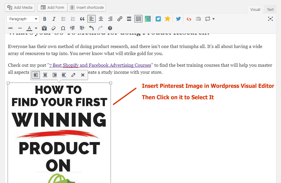 How to Hide Pinterest Pinnable Image In Your Blog Post