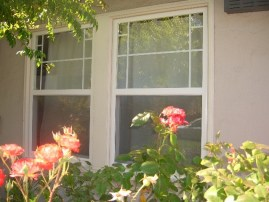 San Ramon Home Windows