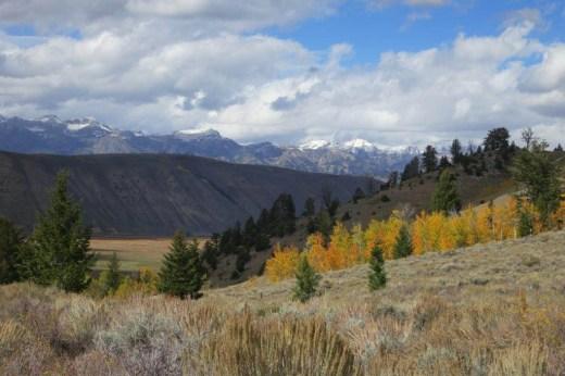 Cache Creek Vista by Darla Jackson