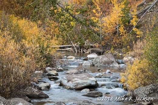 Mosquito Creek Oct 3