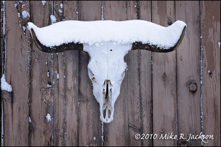 187 Winter In The Tetons Tips For Travel And Photography