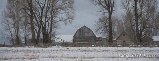 Web Chambers Barn Dec23