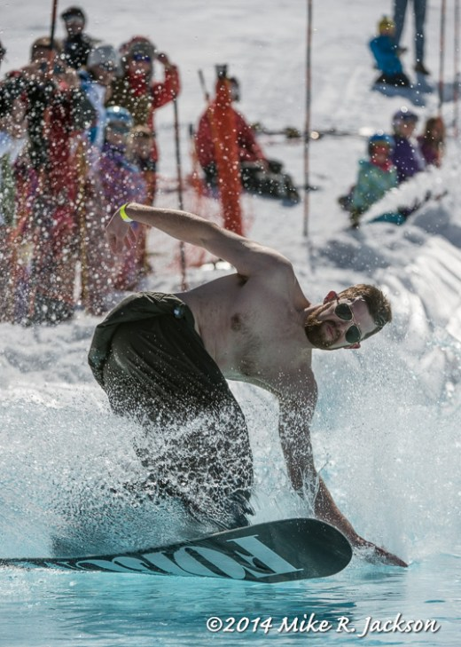 Web Pond Skimmer on SnowboardMar15