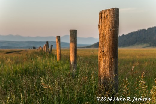 Web_FencePosts_July19