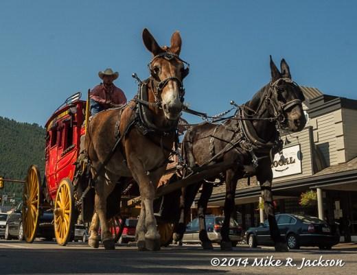 Web_Stagecoach_July12