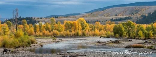 Gros Ventre River Bottom