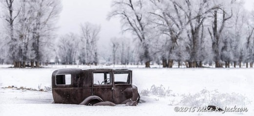 Abandoned Ford