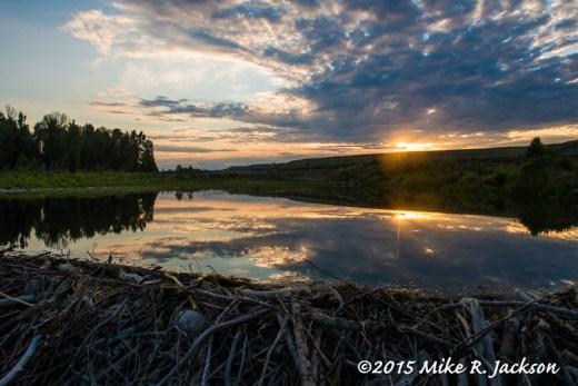 Sunrise Over the Beaver Ponds